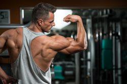 Wie baut man effektiv Muskelmasse
